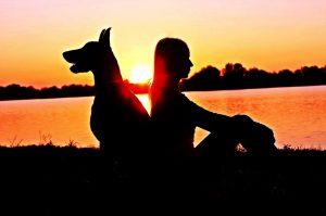 Die Verantwortung für einen Hund gibt uns Selbstbewusstsein