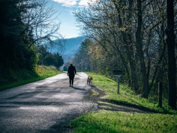 Ein Hund hilft bei täglicher Bewegung