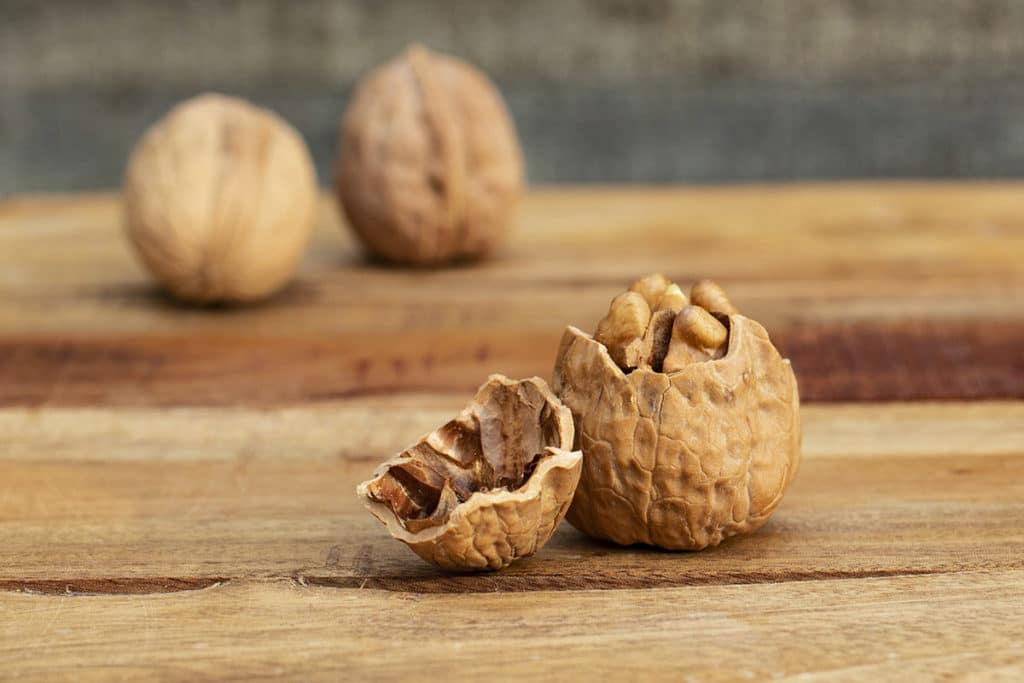 B-Vitamine in Walnüssen stärken unsere Nerven